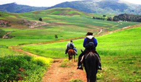 Tour Caballo-Full Day
